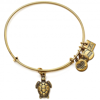 Gold Sea Turtle Bangle