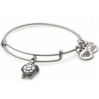 Silver Sea Turtle Bangle
