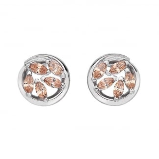 Purity and Loyalty Champagne Coloured Ear Studs