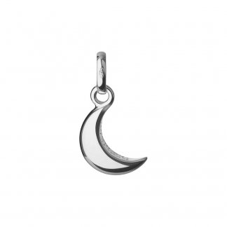 Reach for the Moon Charm 5030.1804
