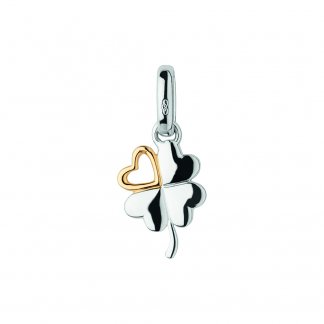 Two Tone Lucky In Love Charm
