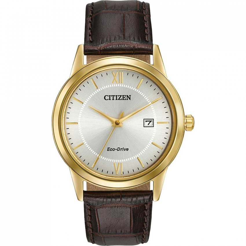 citizen s gold plated brown eco drive