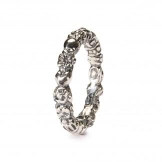 Silver Troll Ring Size 51